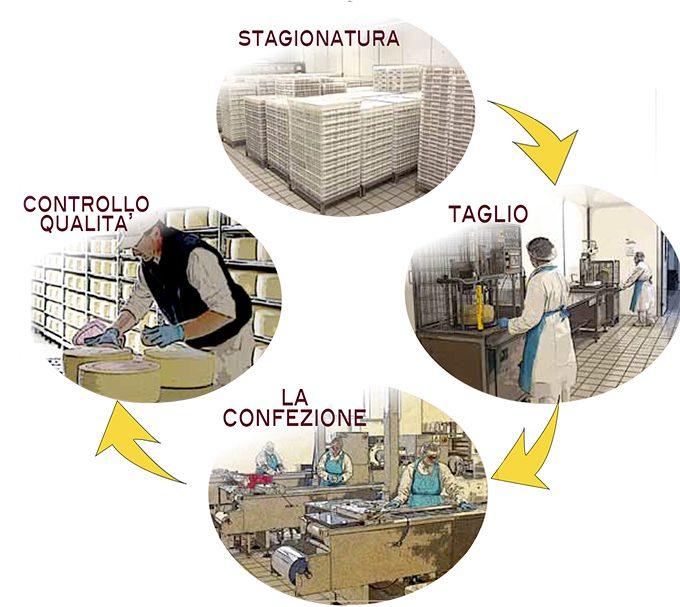 ciclo-produttivo